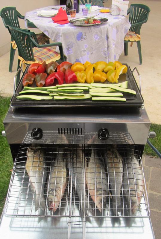 Grill da casa per cucinare pesce - barbecue a gas che non fa fumo - barbecue a gas con piastra in acciaio inox